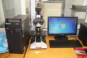 600X  Microscope